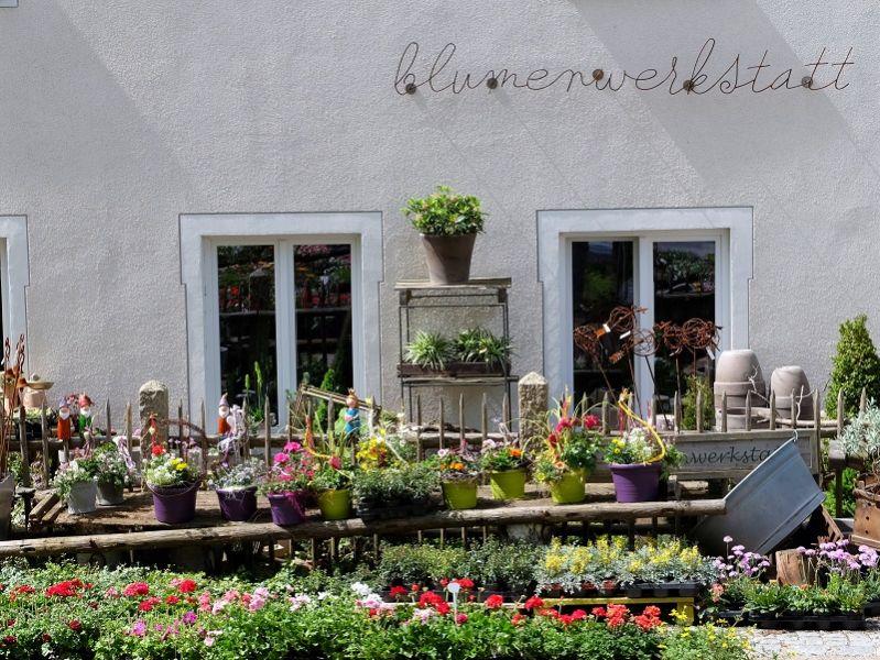 Blumenwerkstatt Wörth